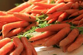 carottes PM