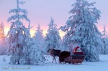 image-pere-noel-renne-laponie-finlande-photo-210x138